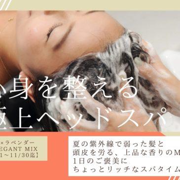 【10/1~11/30迄】秋の限定キャンペーンのお知らせ